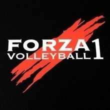 Forza Volleyball Multi-Color Cut-Out Stickers