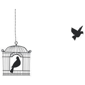 Open Birdcage with Flying Bird Wall Decal