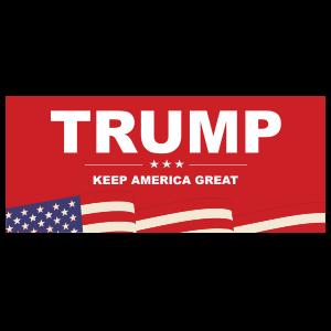 Trump Rectangle Bumper Sticker